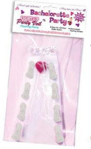 Bachelorette Light Up Party Veil
